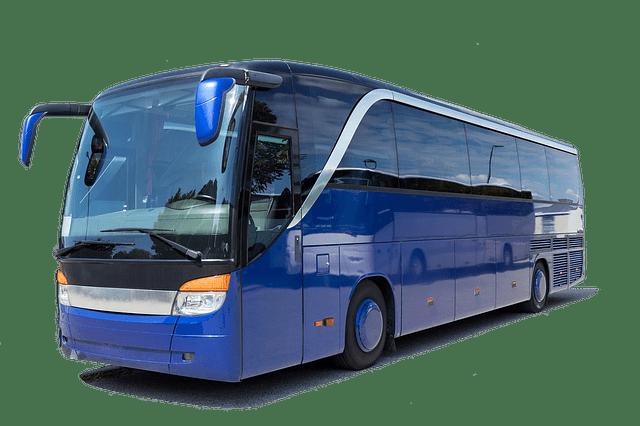 jasa bus